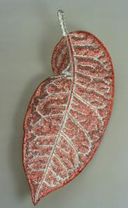 Croton Clasico